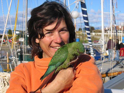 jeromine-perroquet